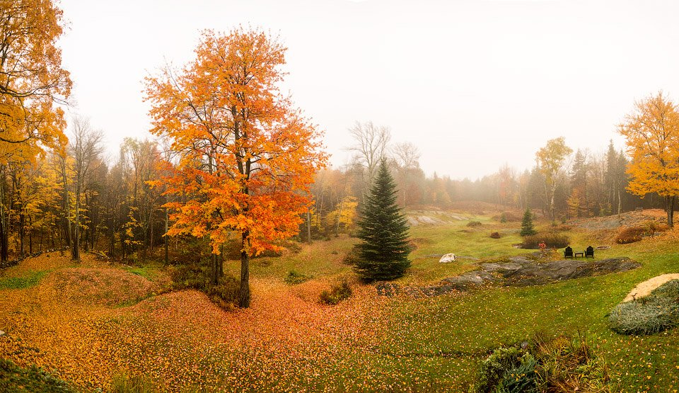 Foggy Fall Morning in Vermont